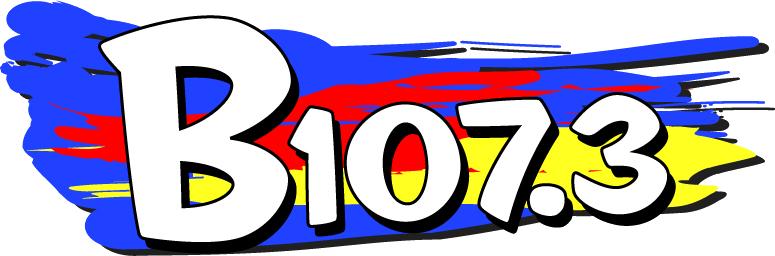 B107.3